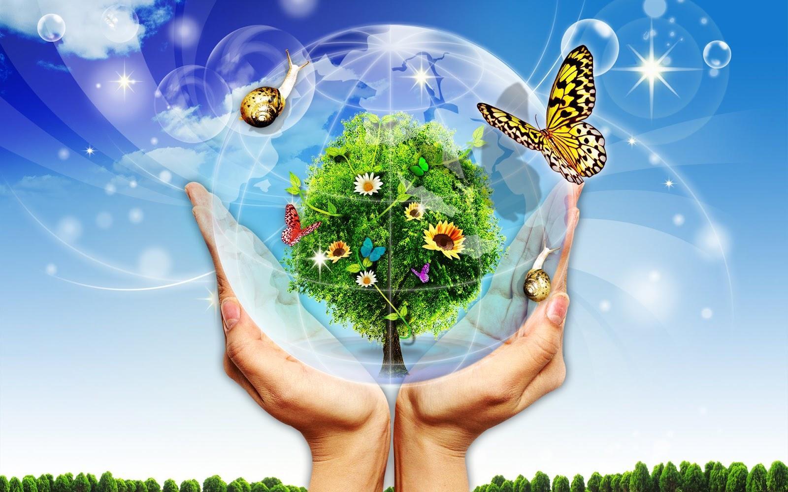 Ngày môi trường thế giới là gì?