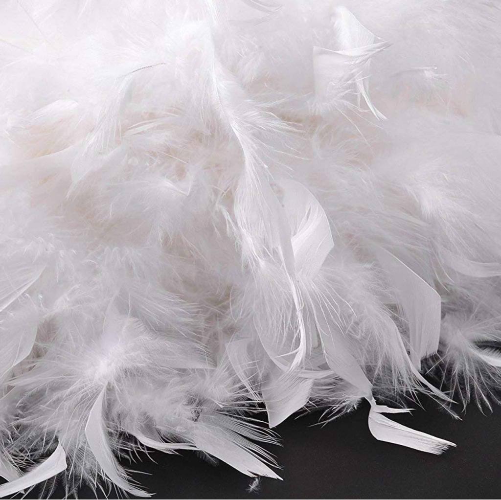 Thu mua lông vịt giá cao ở đâu, thu mua lông vũ vịt để làm gì? giá thu mua lông vịt hôm nay